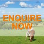 TV-Enquire-Now